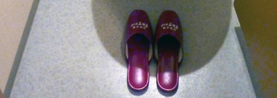Ryugujo Spa Hotel Mikazuki toilet slippers