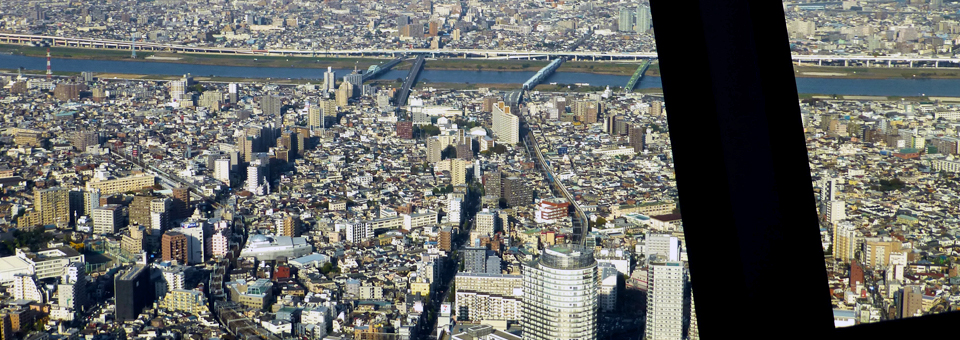 view from Sky Tree, Tokyo