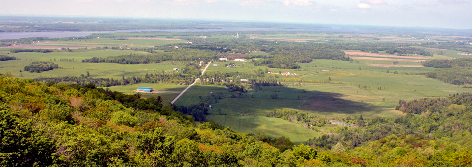 Gatineau Park overlook