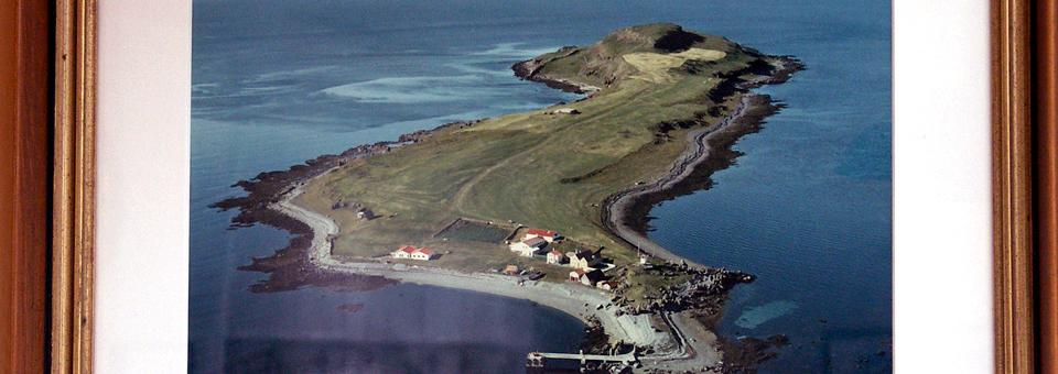Vigur Island, Iceland, aerial view