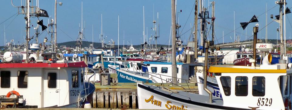 fishing boats, Magdalen Islands