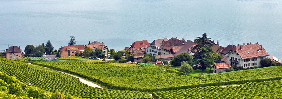 Lavaux village
