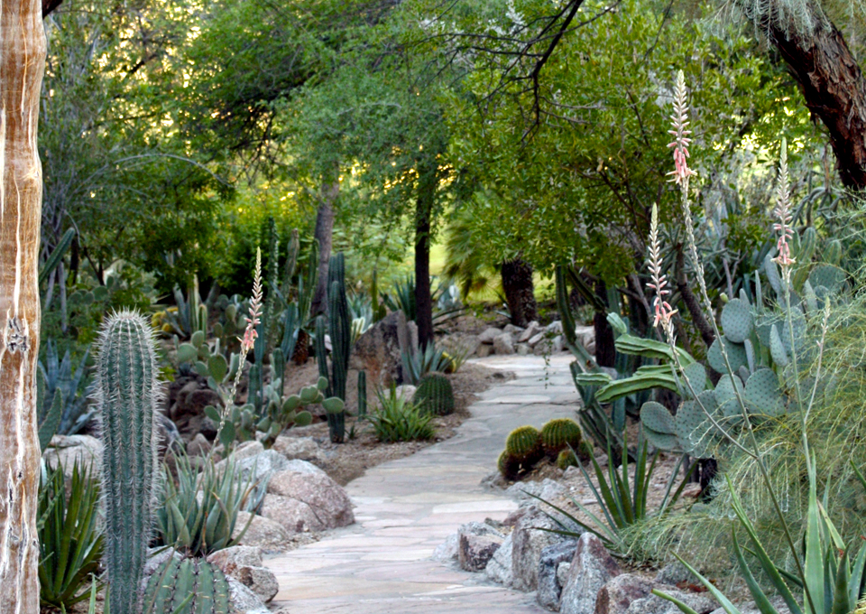 garden pathway, The Phoenician, Scottsdale, Arizona