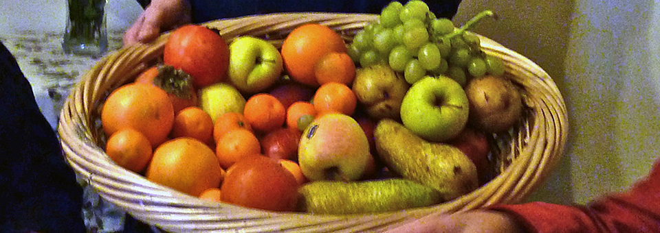 fruits from the garden at Borgo della Limonaia