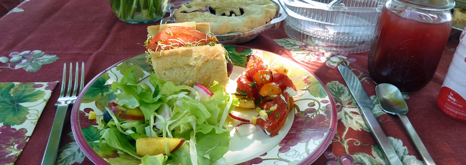 picnic of locally sourced foods, Finger Lakes , New York