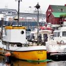 The Faroe Islands: The Sheep Islands