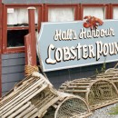 Ultimate lobsters and extreme tides: Hall's Harbour, Nova Scotia