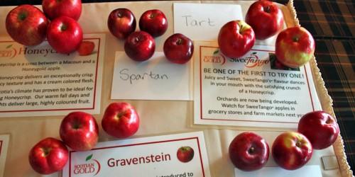 Nova Scotian apples