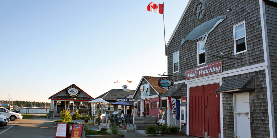 whale watching storefronts, St. Andrews by-the-Sea, New Brunswick