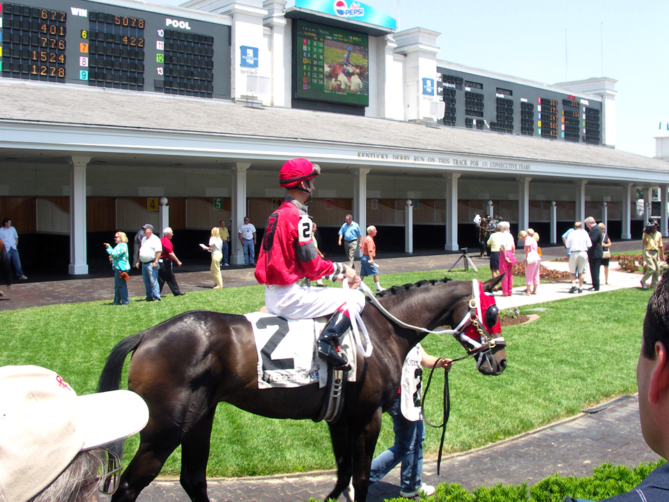 Thoroughbreds are paraded for all to see before the race at Churchill Downs, Louisville, Kentucky.