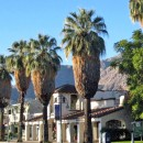 Palm Springs, California: Sunny Days and Starry Nights in the California Desert