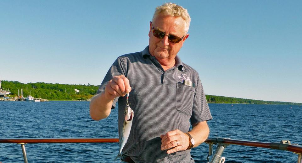 mackerel caught aboard the Brown Eyed girl, Shelburne Harbour, Nova Scotia