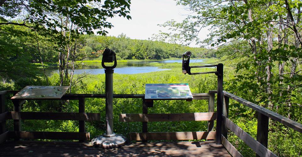 Kejimkujik National Park and National Historic Site, Nova Scotia