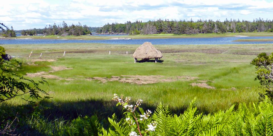 salt hay stacks at Le Village historique acadien de la Nouvelle Ecosse, Nova Scotia