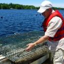 Eel Lake Oyster Farm, home of the Ruisseau oyster, Ste-Anne-du-Ruisseau, Nova Scotia