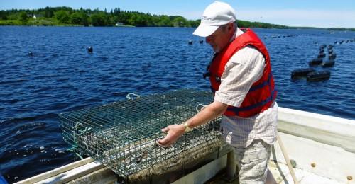 """The Oysterman,"" Nolan D'Eon, at Eel Lake Oyster Farm, Nova Scotia"