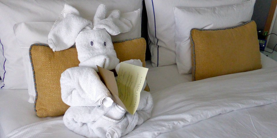 towel animal aboard the Viking Njord