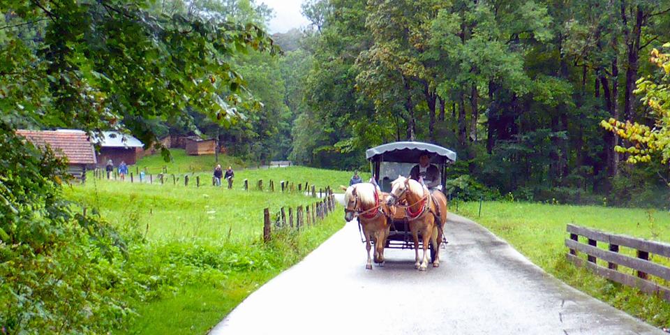 horse and carriage, Partnach Gorge, Garmisch-Partenkirchen