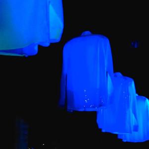 dancing shirts, Swarovski Crystal Worlds
