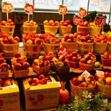 Quebec City public market, Marché du Vieux-Port, apples