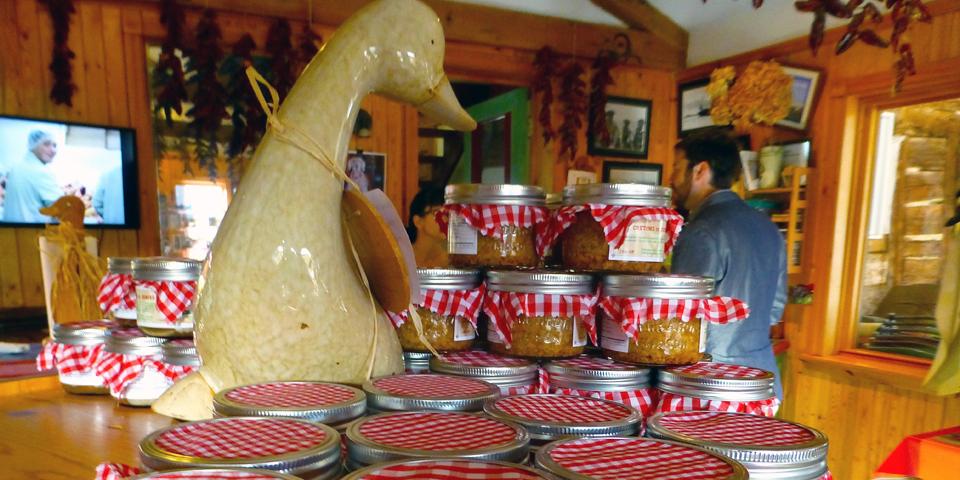 free range ducks for fois gras, La Ferme Basque de Charlevoix, Saint-Urbain, Quebec, Canada