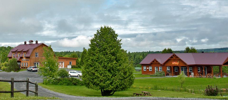 Savon des Canton and Gourmet par Nature, Eastern Townships, Québec, Canada
