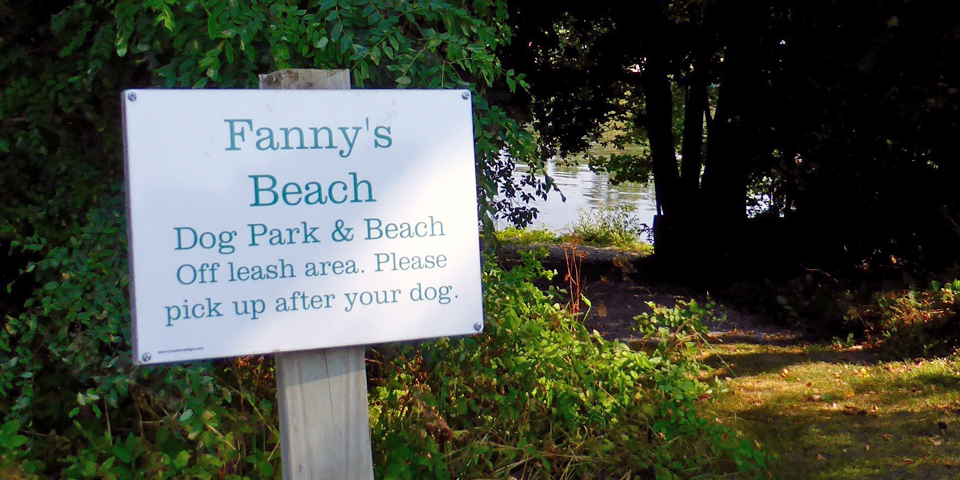 Fanny's Beach for dogs, Basin Harbor Club, Vergennes, Vermont
