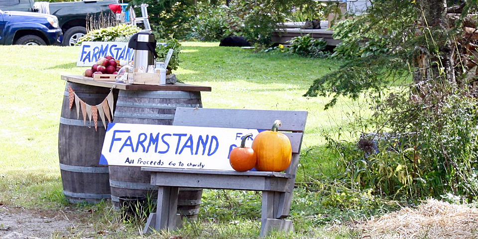 farm stand, Stowe, Vermont