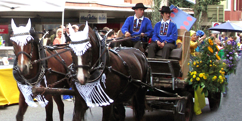 children, adults, and even horses were dressed for the harvest festivities and parade, Spietz, Switzerland