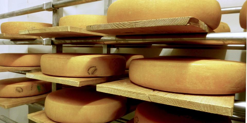 Bergkäse in Alpkäserei Handegg cheese storage hut