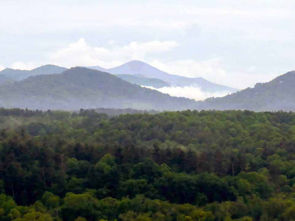 view from The Inn at Biltmore, Asheville, North Carolina