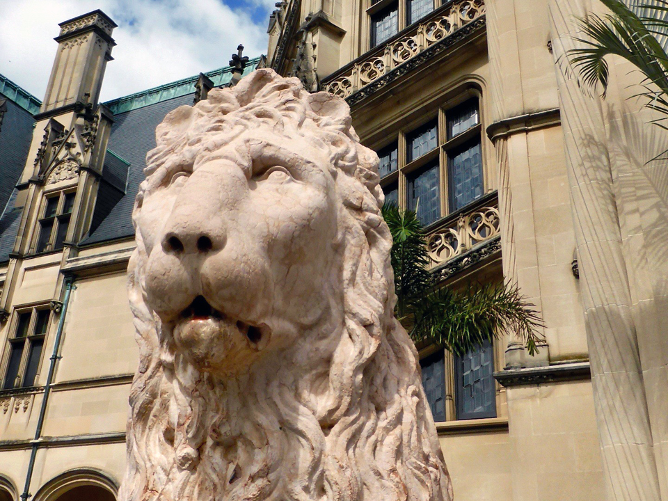 one of two lions at entrance to Biltmore House, Asheville, North Carolina