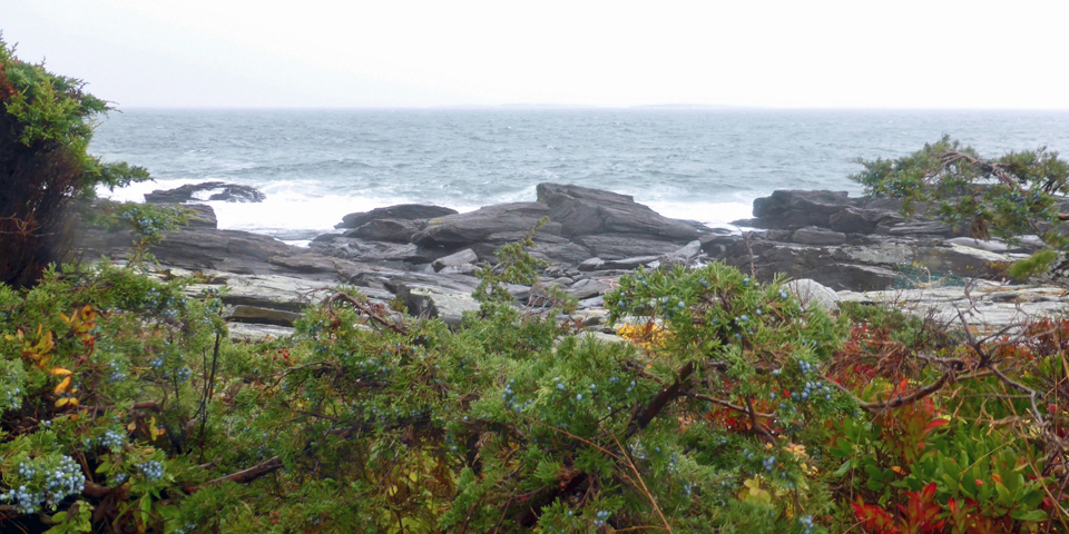 Cliff Walk, Scarborough, Maine