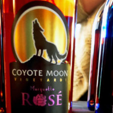 Coyote Moon wine, Clayton, NY