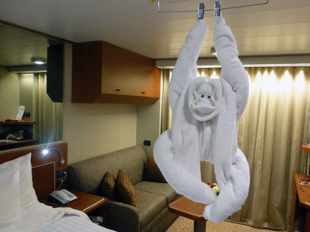 towel monkey in our stateroom, Eurodam