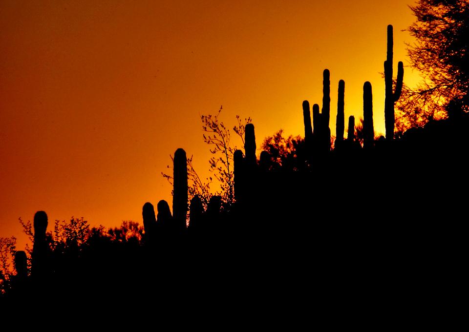 sunset at Camelback Mountain, Scottsdale, Arizona
